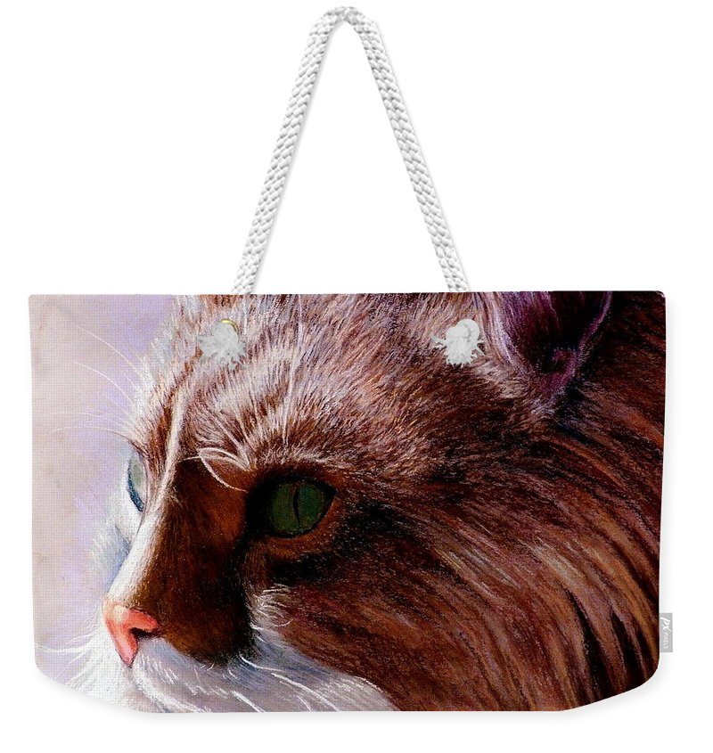 Cat Portrait. Weekender Tote Bag featuring the painting Maine Coon Cat by John Gabb