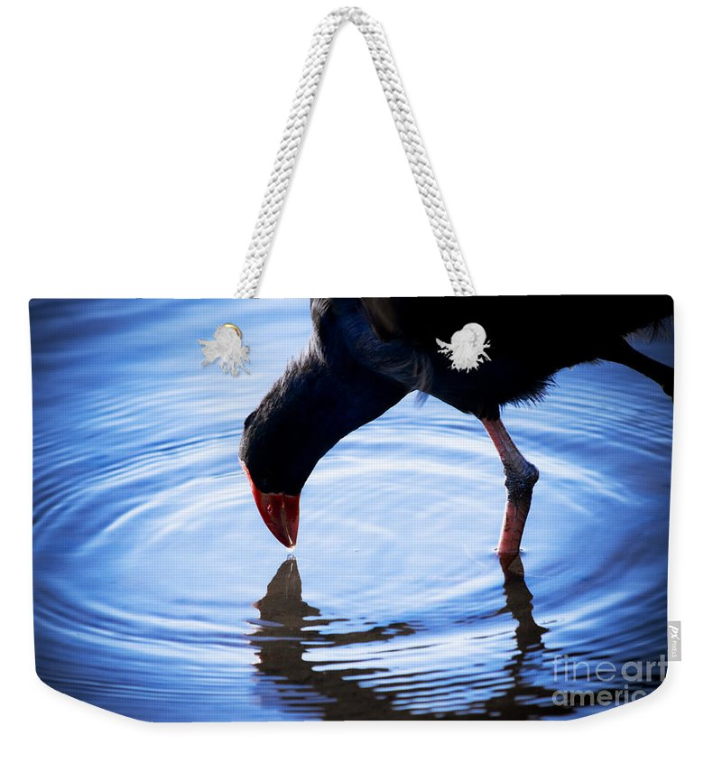 Wildlife Weekender Tote Bag featuring the photograph Coot Pond Droplet by Jorgo Photography - Wall Art Gallery