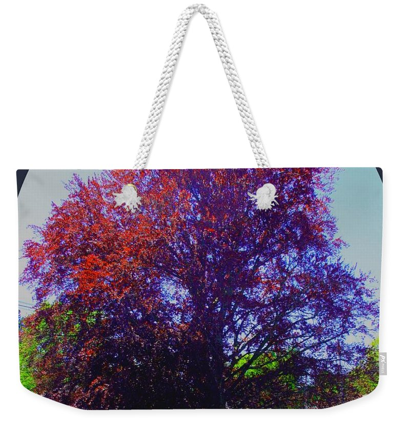 Trees Weekender Tote Bag featuring the painting Copper Birch by Cliff Wilson