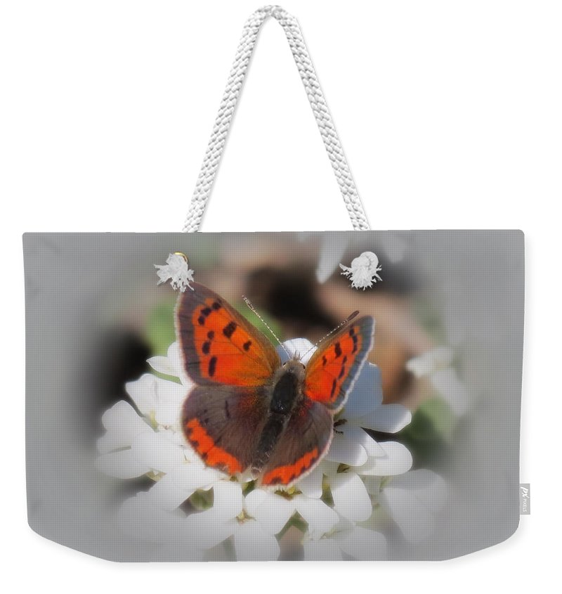 Weekender Tote Bag featuring the photograph Copper Glow - Butterfly by MTBobbins Photography