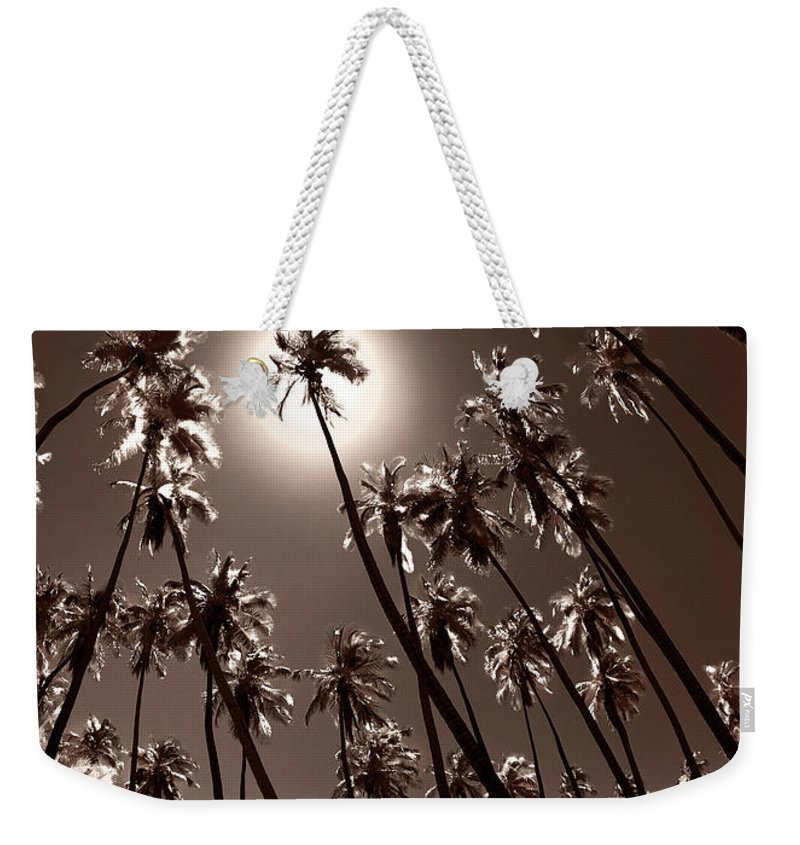 Monotone Weekender Tote Bag featuring the photograph Coppertone Palms by Sean Davey