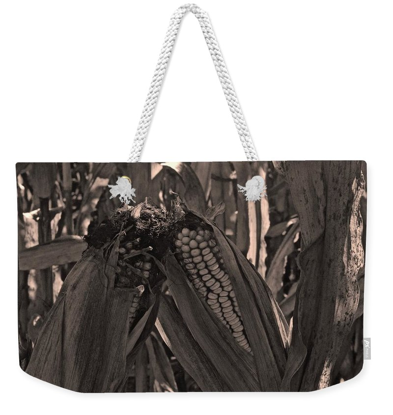 Tiwago Weekender Tote Bag featuring the photograph Corn Portrait by Photography by Tiwago