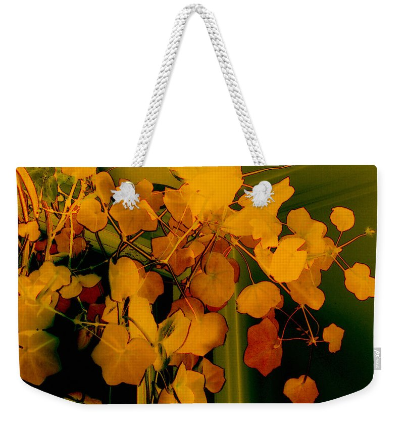 Autumn Weekender Tote Bag featuring the digital art Corner In Green And Gold by RC DeWinter