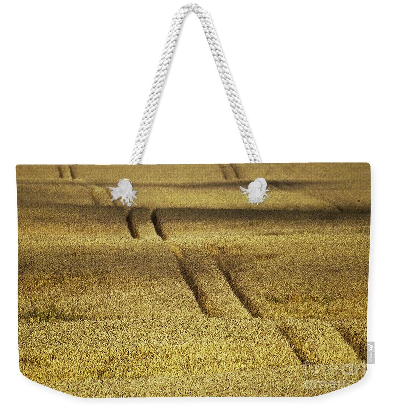 Heiko Weekender Tote Bag featuring the photograph Cornfield by Heiko Koehrer-Wagner