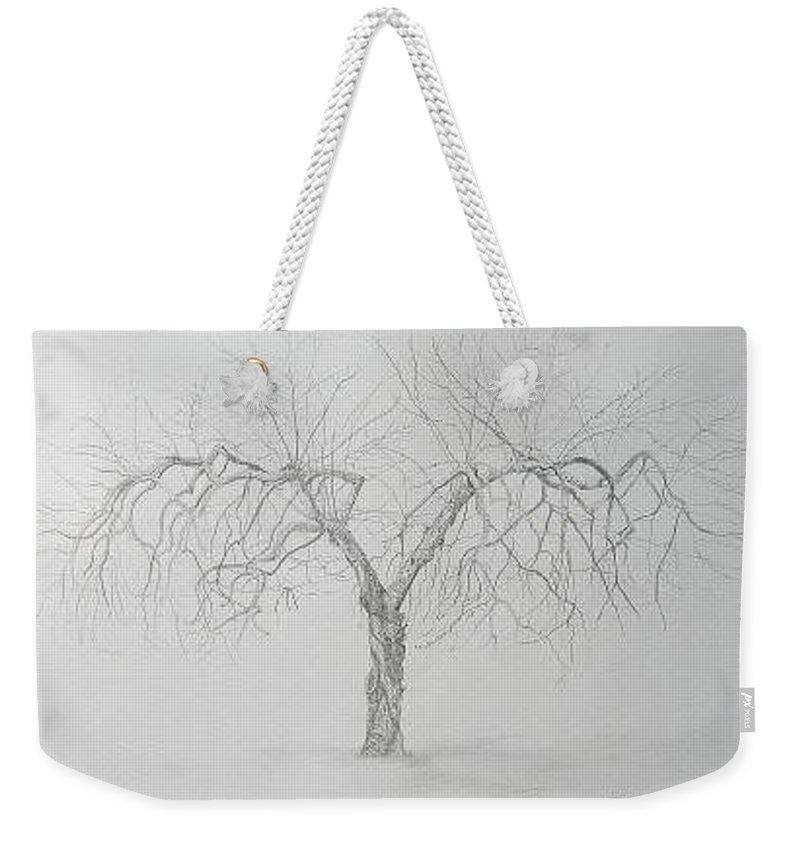 Cortland Apple Tree Weekender Tote Bag featuring the drawing Cortland Apple by Leah Tomaino