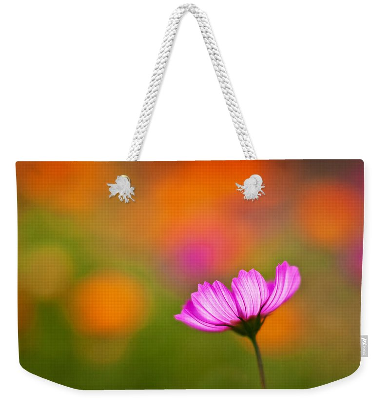 Cosmo Weekender Tote Bag featuring the photograph Cosmo Pastels by Mike Reid