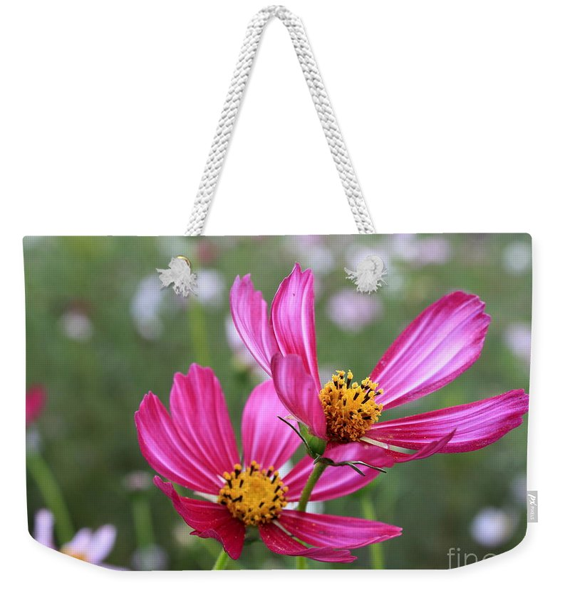 Cosmos Weekender Tote Bag featuring the photograph Cosmos In Tokyo by Carol Groenen