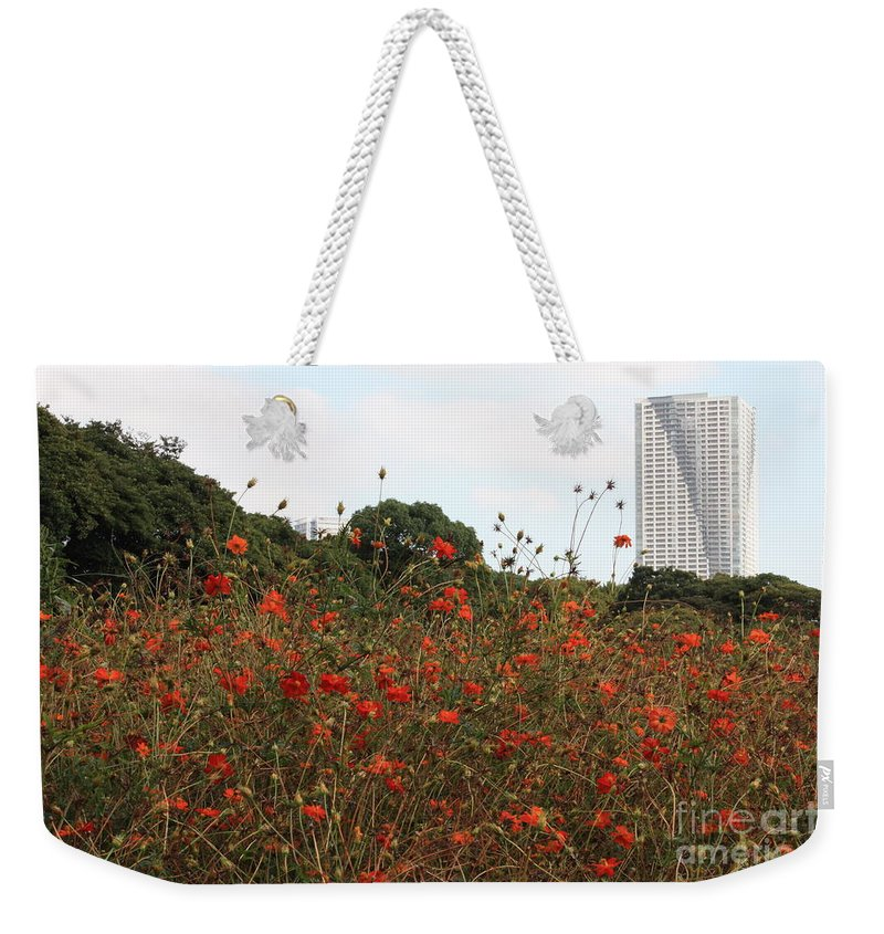 Tokyo Weekender Tote Bag featuring the photograph Cosmos In Tokyo Garden by Carol Groenen