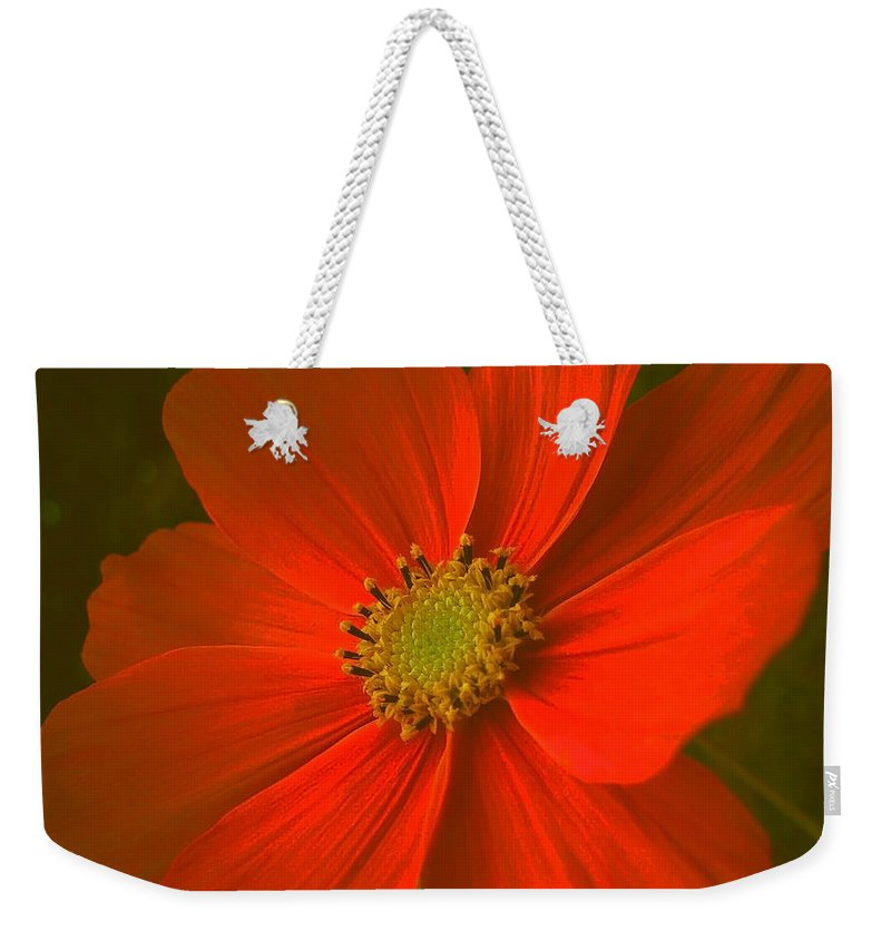 Flower Weekender Tote Bag featuring the photograph Cosmos by Juergen Weiss
