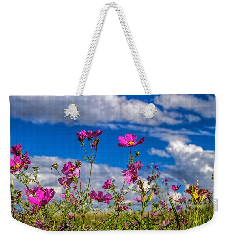 Botanical Weekender Tote Bag featuring the photograph Cosmos Sky by Alana Thrower