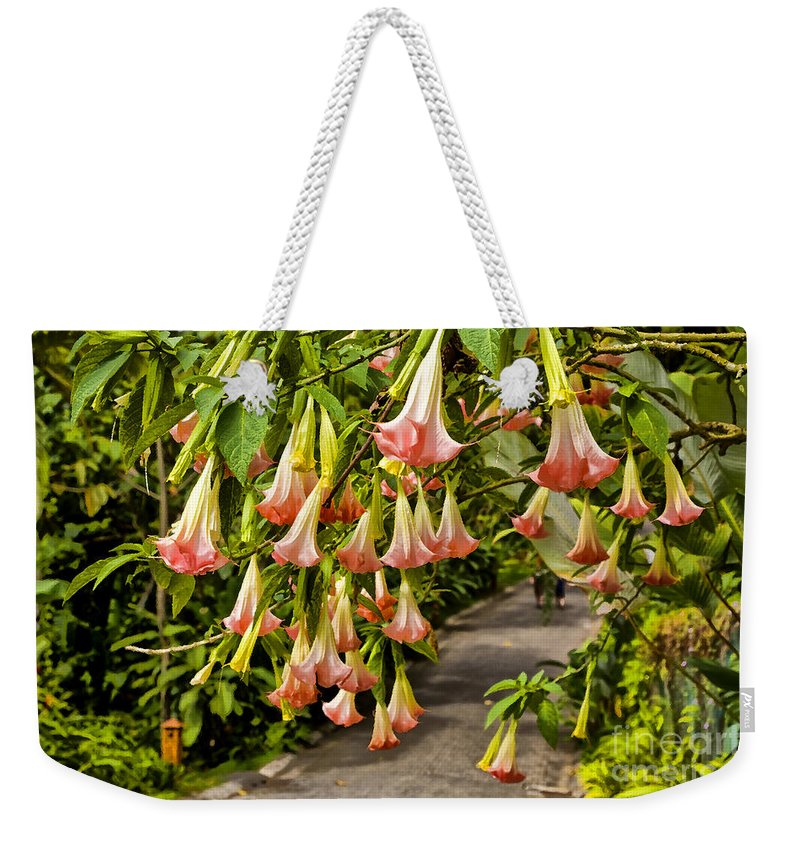 Wedding Bells Weekender Tote Bag featuring the photograph Costa Rica Wedding Bells by Madeline Ellis