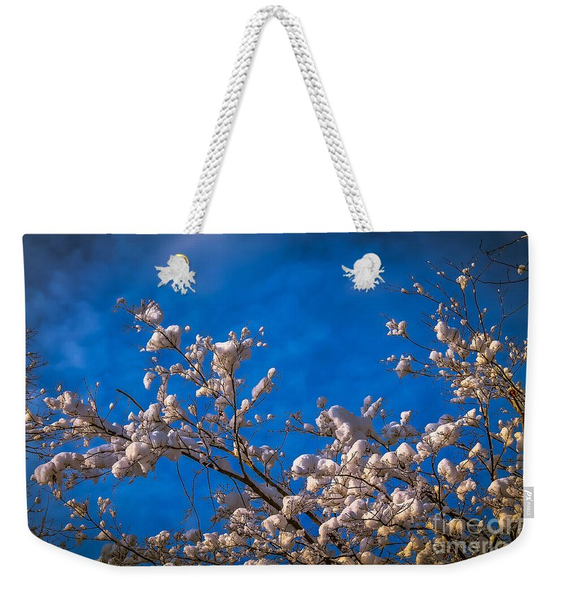 Winter Weekender Tote Bag featuring the photograph Cotton Balls by Claudia M Photography