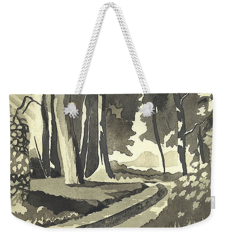 Rural Weekender Tote Bag featuring the painting Country Lane In Evening Shadow by Kip DeVore