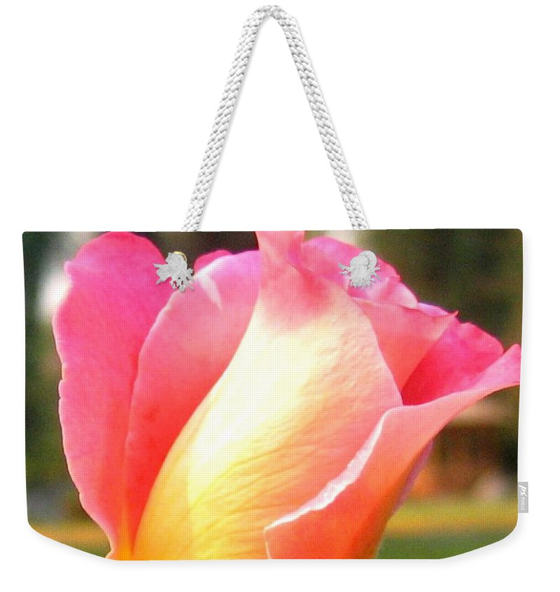 Rose Weekender Tote Bag featuring the photograph Country Rose by Will Borden