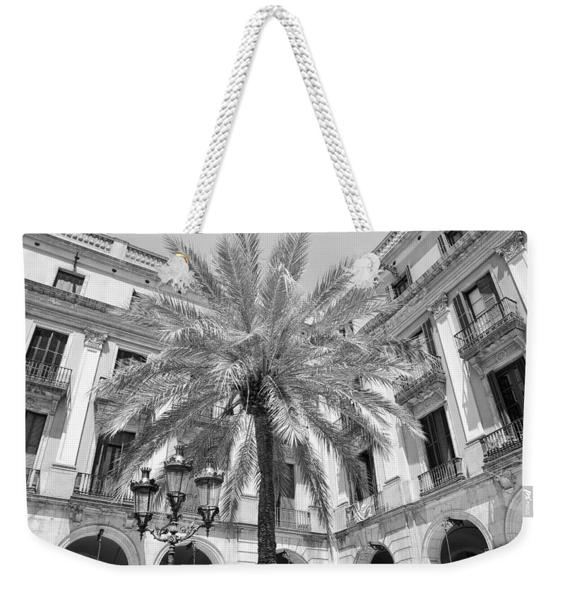 Courtyard Weekender Tote Bag featuring the photograph Courtyard Palm by David Coleman