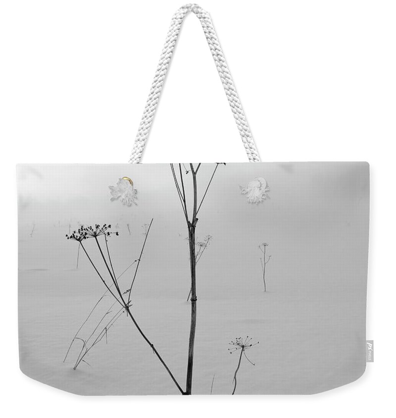 Lehtokukka Weekender Tote Bag featuring the photograph Cow Parsley Bw by Jouko Lehto