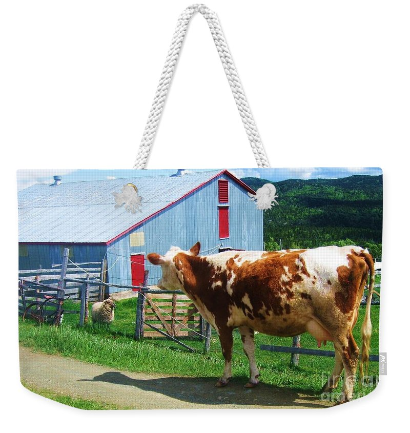 Photograph Cow Sheep Barn Field Newfoundland Weekender Tote Bag featuring the photograph Cow Sheep And Bicycle by Seon-Jeong Kim