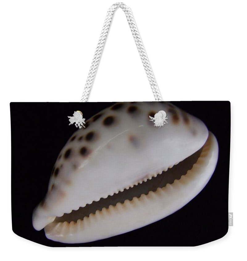 Mary Deal Weekender Tote Bag featuring the photograph Cowry Shell by Mary Deal