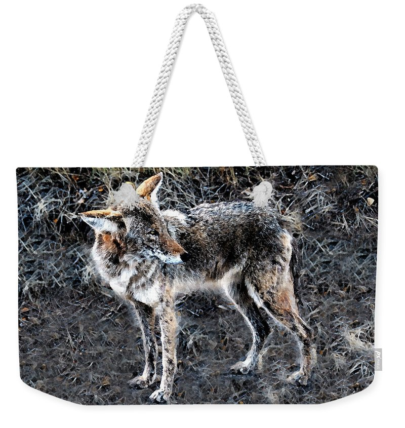 Coyote Weekender Tote Bag featuring the painting Coyote Waits by David Lee Thompson