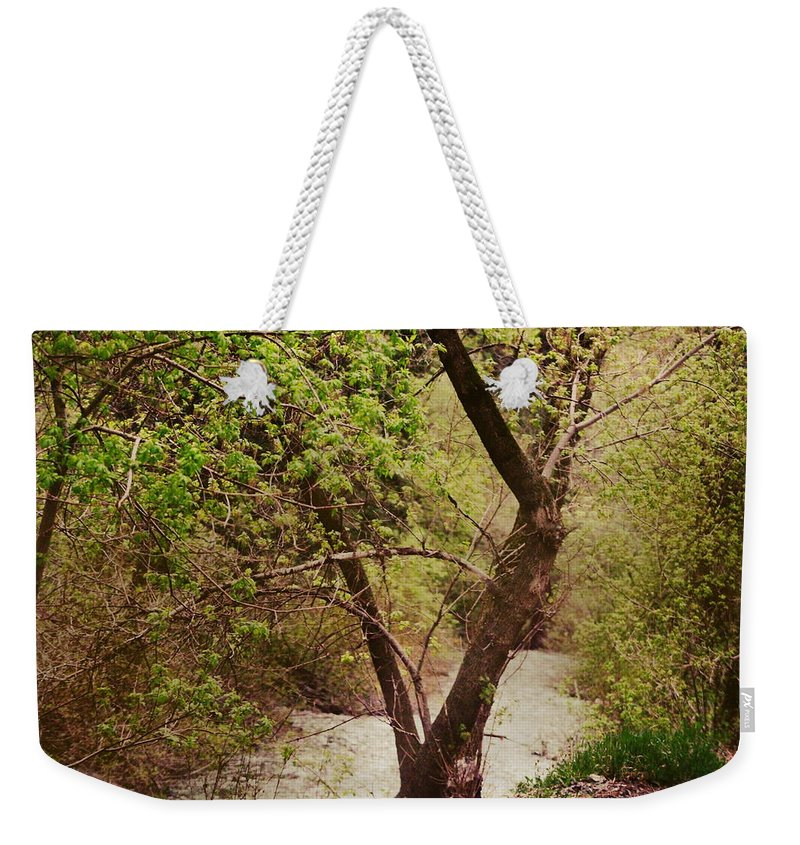 Dreamy Weekender Tote Bag featuring the photograph Cozy Stream in American Fork Canyon Utah by Colleen Cornelius