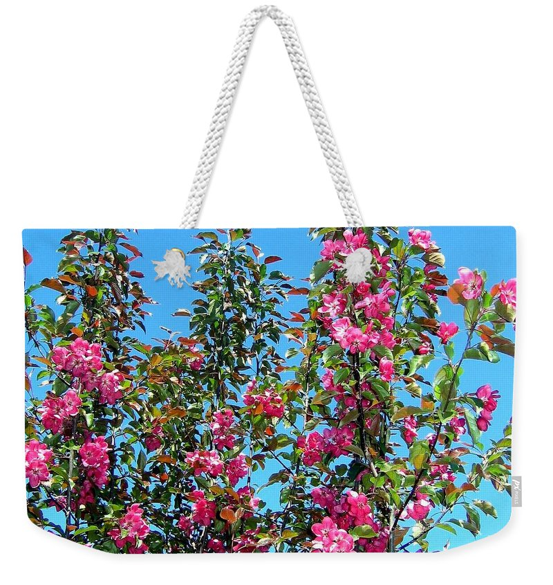 Crab Apple Blossoms Weekender Tote Bag featuring the photograph Crab Apple Blossoms by Will Borden