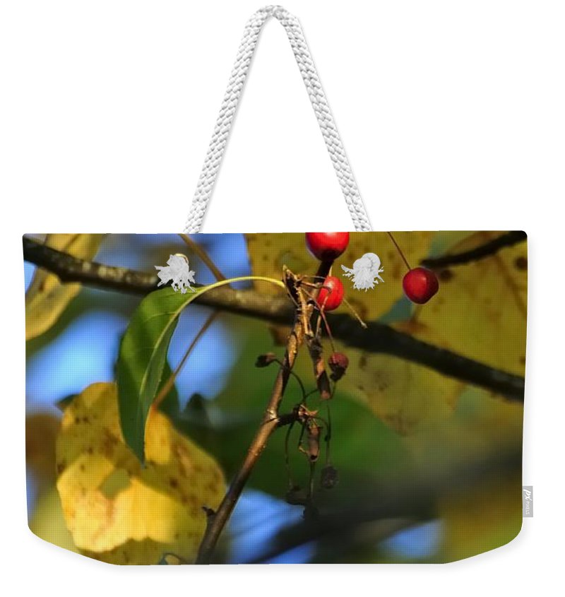 Willamette Weekender Tote Bag featuring the photograph Crab Apples Leaves 6498 by Jerry Sodorff