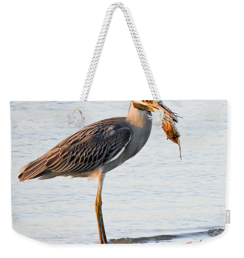 Night Heron Weekender Tote Bag featuring the photograph Crab Dinner by Marilee Noland