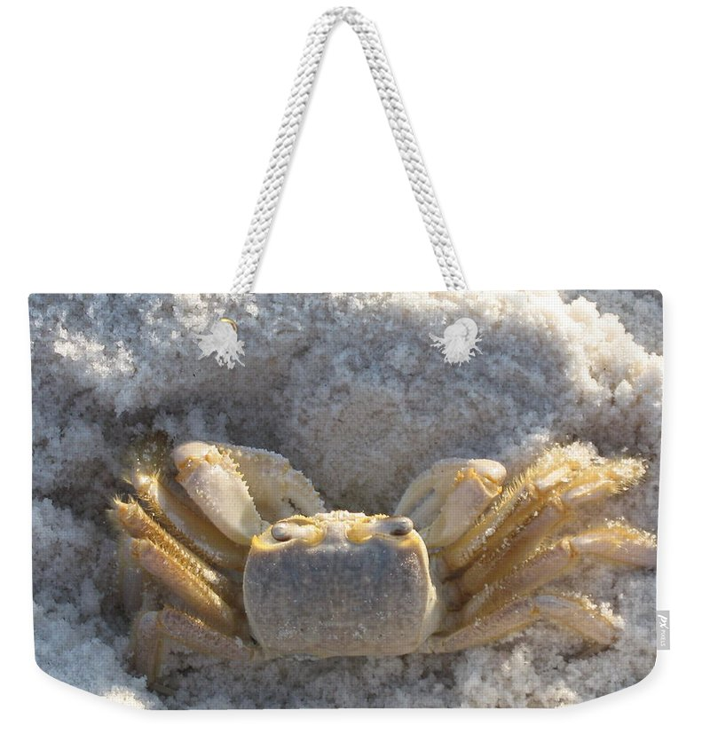 Crab Weekender Tote Bag featuring the photograph Crab On The Beach by Christiane Schulze Art And Photography