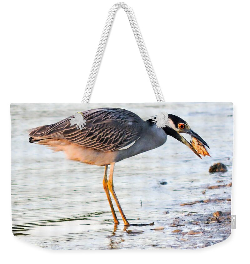Night Heron Weekender Tote Bag featuring the photograph Cracking The Shell by Marilee Noland