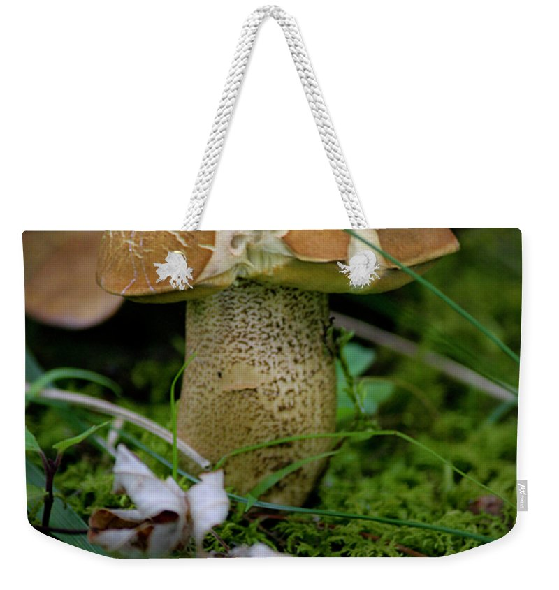 Fungus Weekender Tote Bag featuring the photograph Crackles by Teresa Mucha
