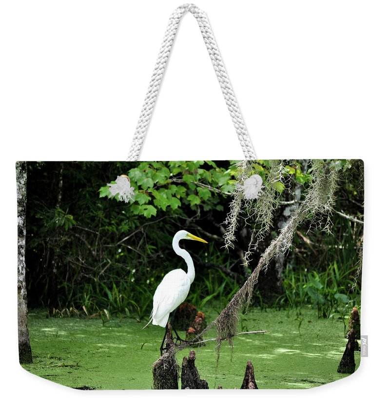 Crane Weekender Tote Bag featuring the photograph Crane by Michelle Rollins