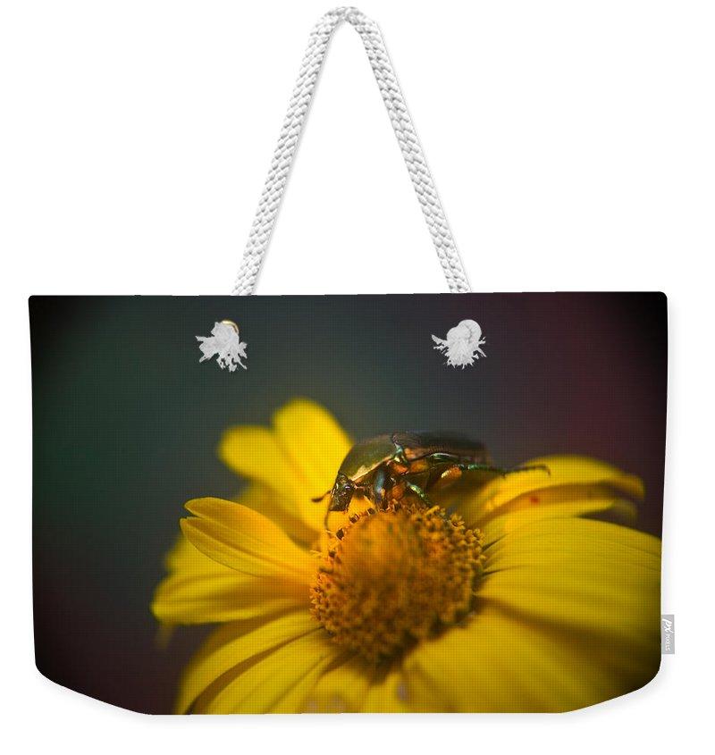 June Weekender Tote Bag featuring the photograph Crawling June Beetle by Douglas Barnett