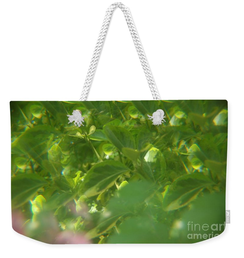 Abstract Weekender Tote Bag featuring the photograph Crazy Floral Two by Alwyn Glasgow