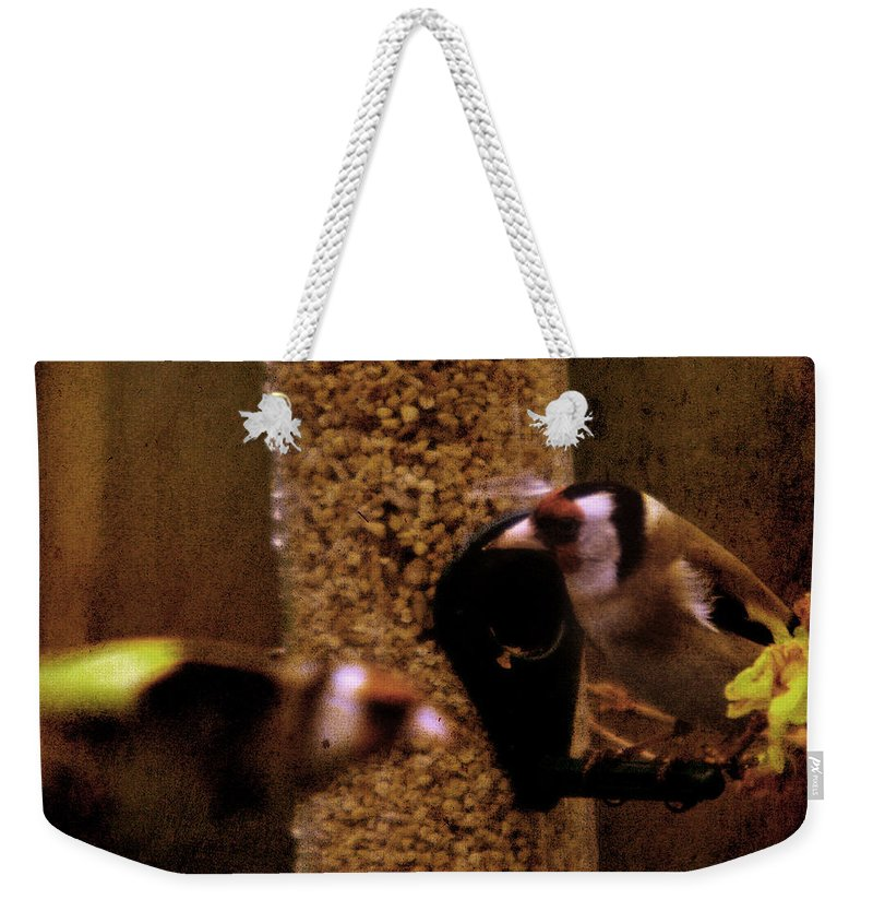 Feeder Weekender Tote Bag featuring the photograph Crazy Goldfinch by Angel Ciesniarska