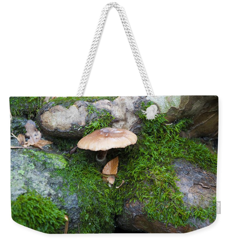 Cream Weekender Tote Bag featuring the photograph Cream Of Mushroom by Bill Cannon