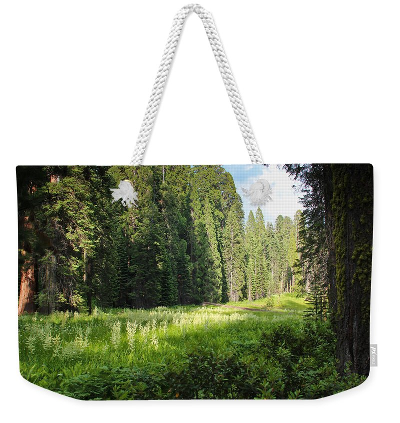 Sequoia Weekender Tote Bag featuring the photograph Crescent Meadow In Sequoia by Heidi Smith