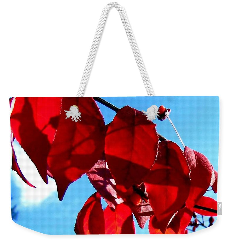 Autumn Weekender Tote Bag featuring the photograph Crimson Hill by Will Borden