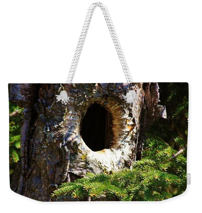 Birch Tree Weekender Tote Bag featuring the photograph Critter Home by Lori Mahaffey