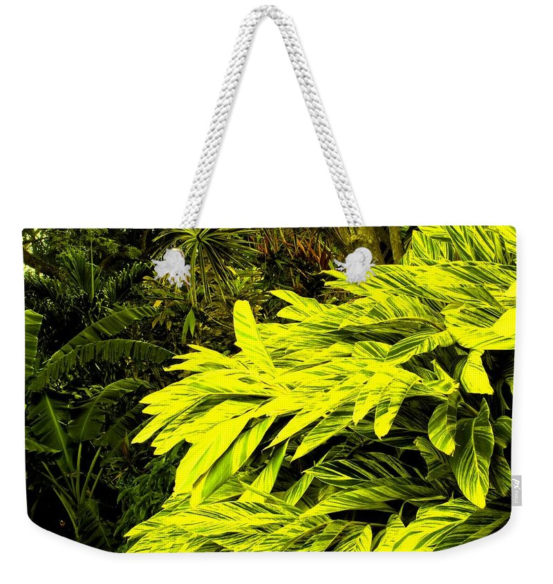 Croton Weekender Tote Bag featuring the photograph Croton Cascading Down The Hillside by Ian MacDonald