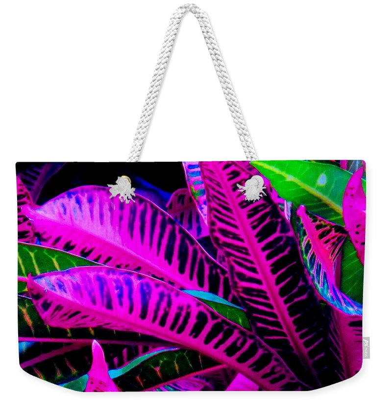 Croydon Plants Purple Green Weekender Tote Bag featuring the photograph Croton by Ian MacDonald