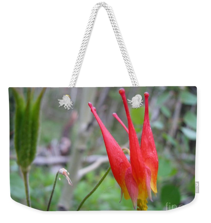 Flowers Of Colorado Weekender Tote Bag featuring the photograph Crown by Amanda Barcon