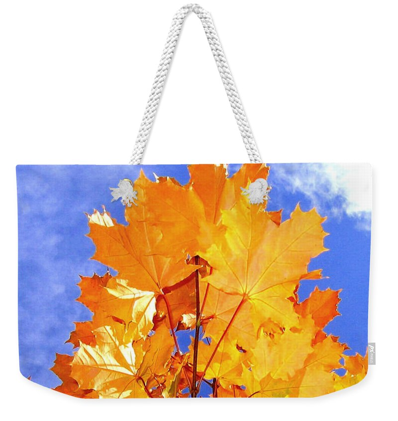 Maple Leaves Weekender Tote Bag featuring the photograph Crown Of Gold by Will Borden