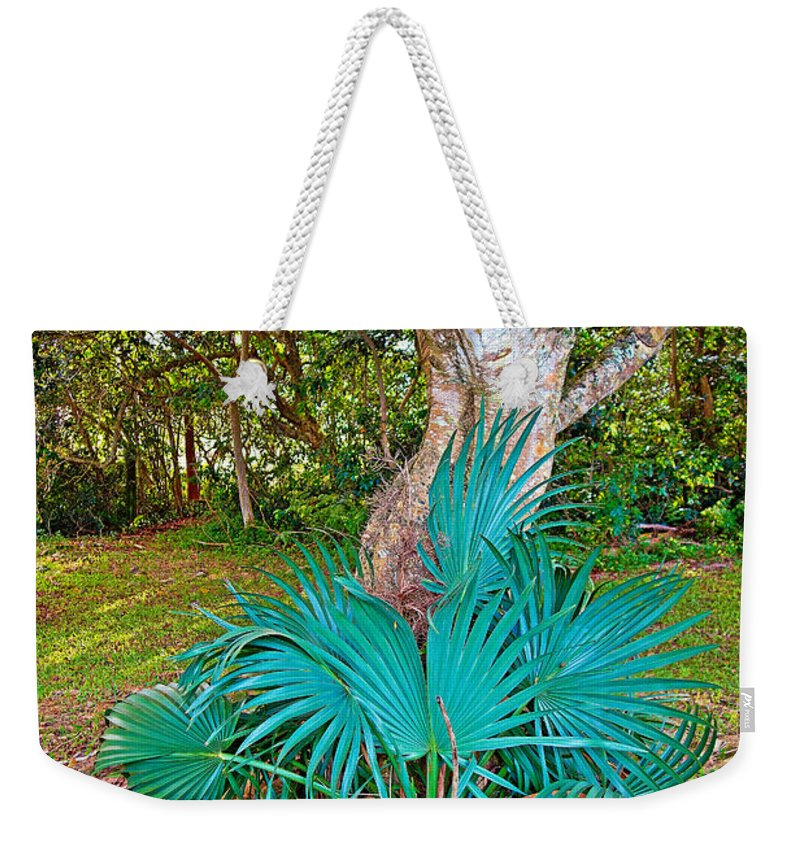 Curves Weekender Tote Bag featuring the photograph Curves And Fronds by Robert Meyers-Lussier
