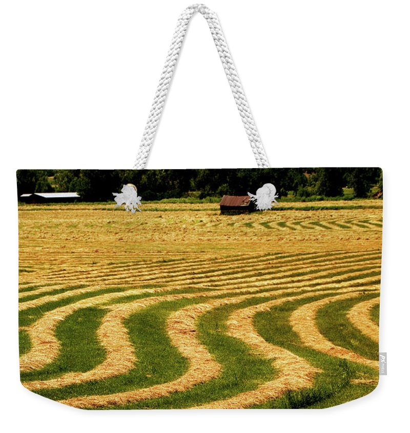 Hay Field Weekender Tote Bag featuring the photograph Cut Hay In Field by Mark Ivins