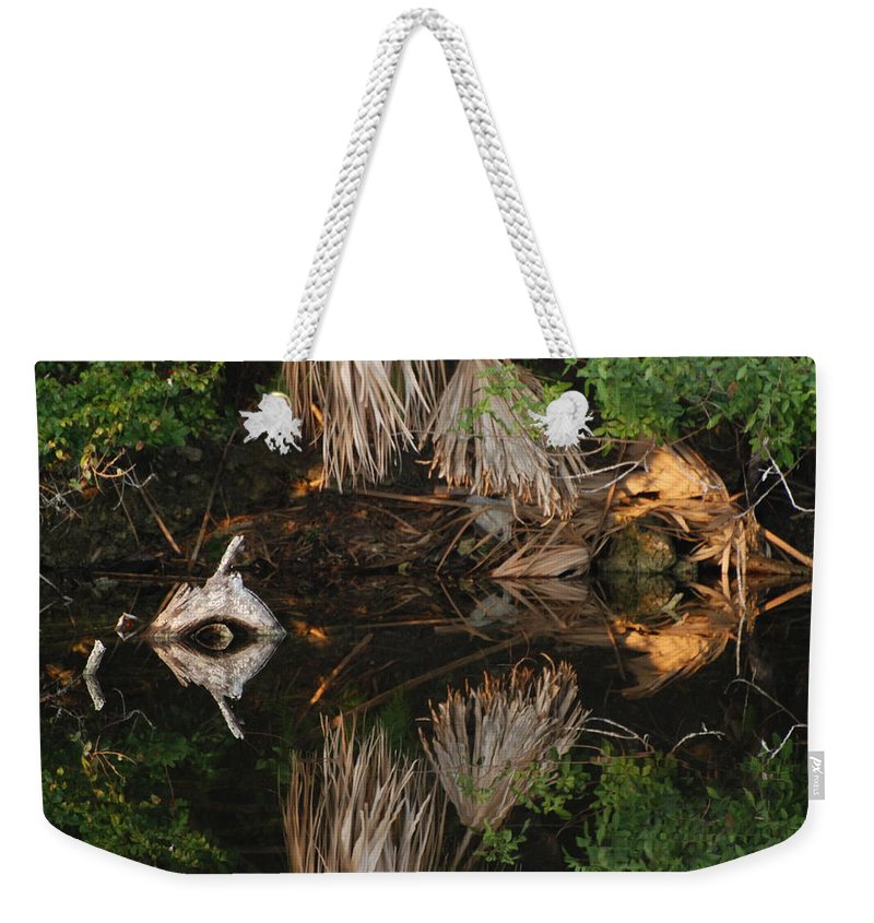 Sunset Weekender Tote Bag featuring the photograph Cyclops In Color by Rob Hans
