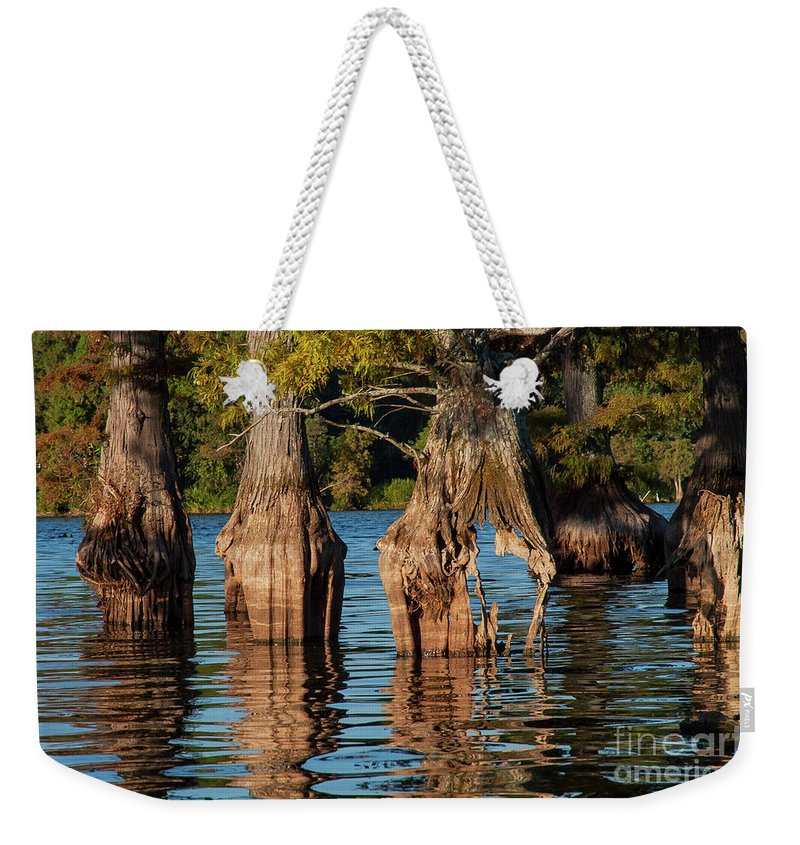Reelfoot Lake State Park Weekender Tote Bag featuring the photograph Cypress Grove One by Bob Phillips