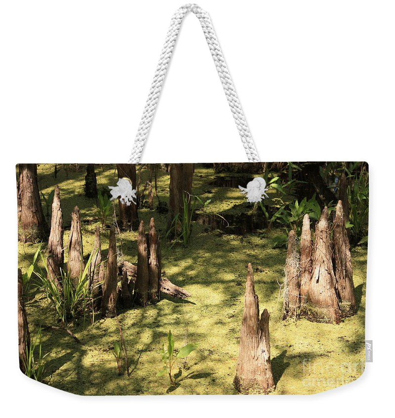 Swamps Weekender Tote Bag featuring the photograph Cypress Knees In Green Swamp by Carol Groenen