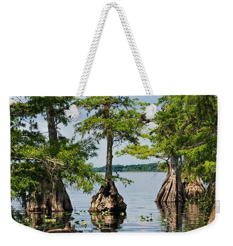 Trees Weekender Tote Bag featuring the photograph Cypress Reflections by Christopher Holmes