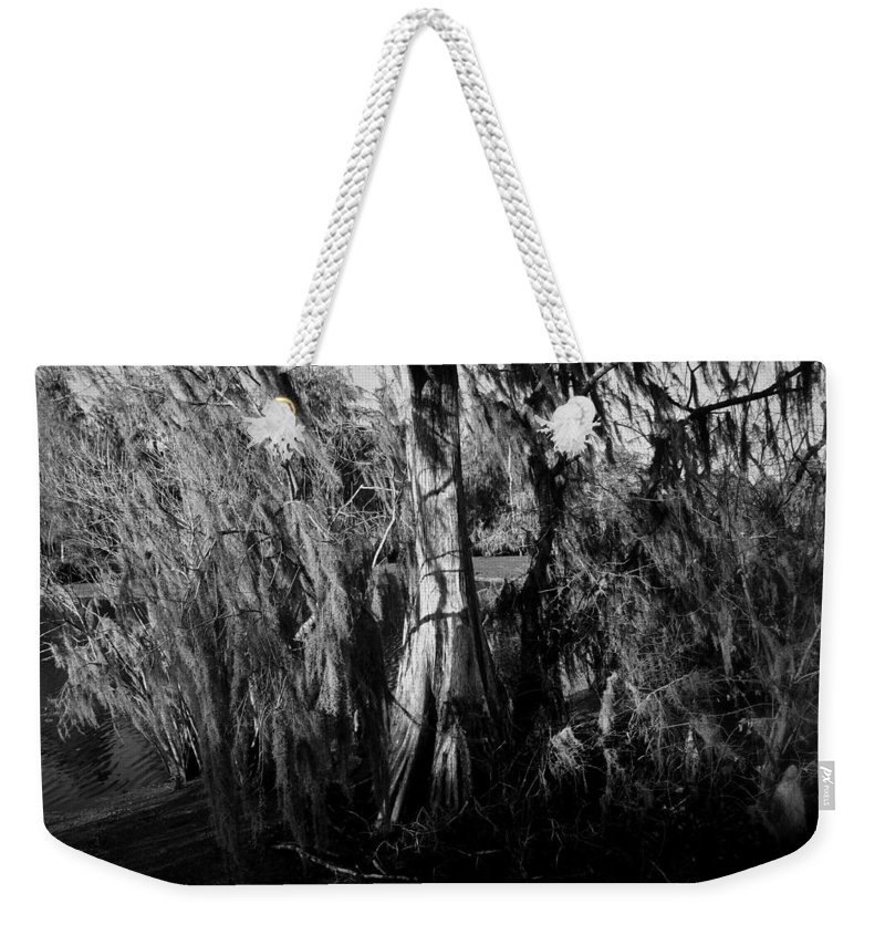 Cypress Tree Weekender Tote Bag featuring the photograph Cypress Tree by David Lee Thompson