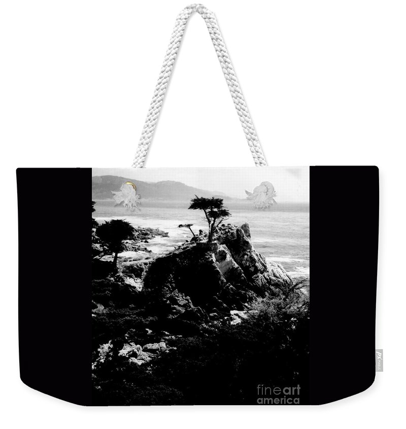 Cypress Weekender Tote Bag featuring the photograph Cypress Trees by Kathleen Struckle